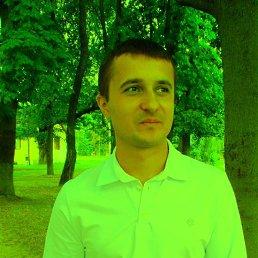Вадик, 29 лет, Апрелевка