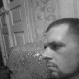 Денис, 29 лет, Алатырь