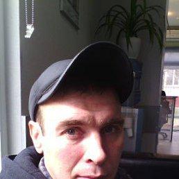 денис, 39 лет, Гуково