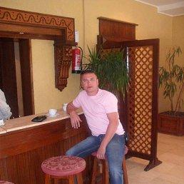 Сергей, 41 год, Егорьевск