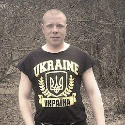 Сергей, 29 лет, Александрия