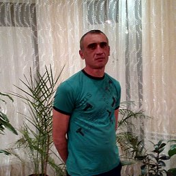 Денис, 41 год, Кировск