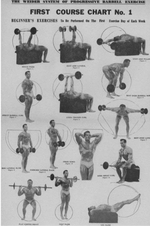 пошагово тренировочный курс бодибилдинга с картинками особенность