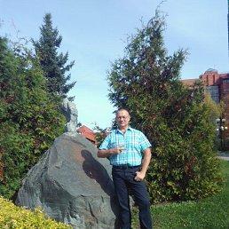 Анатолий, 51 год, Ступино
