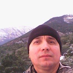 Сергей, 44 года, Великая Александровка