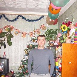 Сергей, 42 года, Миасс