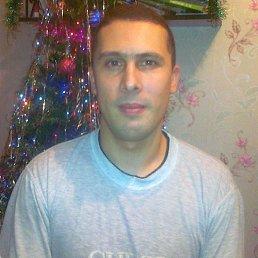 сергей, 38 лет, Фурманов