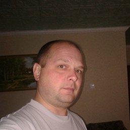 Сергей, 44 года, Шаховская