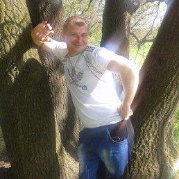 Игорь, 34 года, Зоринск