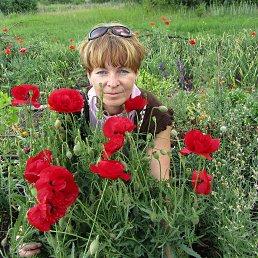 Алина, 52 года, Димитров