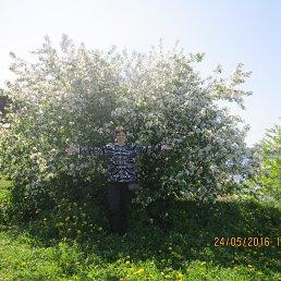 Наталья, 46 лет, Вырица