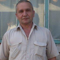 Мусийко, 60 лет, Межевая
