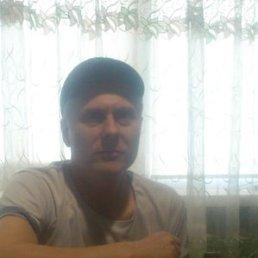 Андрей, 39 лет, Иваничи