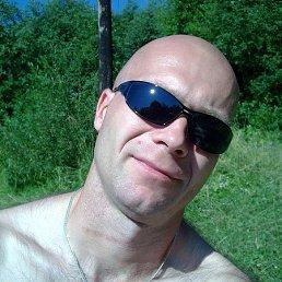 Александр, 42 года, Крестцы