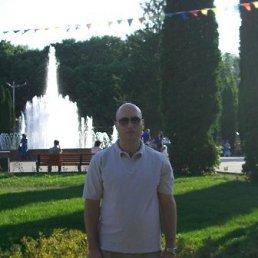 Андрей Сонин, 36 лет, Москва