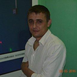 Сергей, 34 года, Красногорский