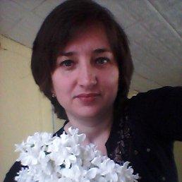 Світлана, 44 года, Хорол