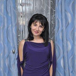 Светлана, 44 года, Купянск