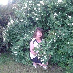 Дашенька, 46 лет, Коростень