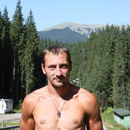 Igor, 29 лет, Тячев