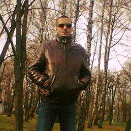 Володя, 29 лет, Борислав