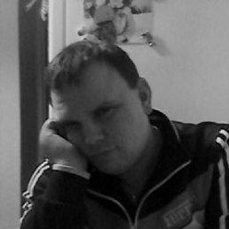 Александр, 31 год, Весьегонск