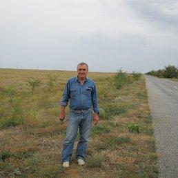 Константин, 67 лет, Приморск