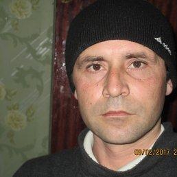 Виталик, 36 лет, Гребенки