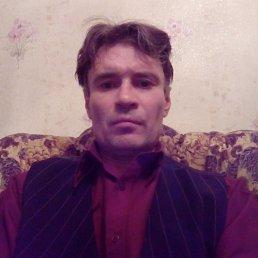 Дима, 48 лет, Лесной