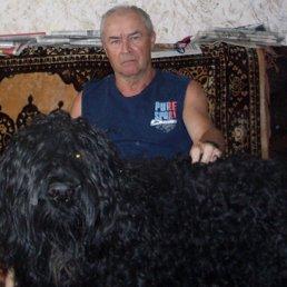 Александр, 65 лет, Камбарка