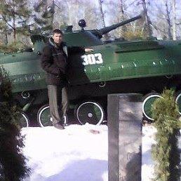 кирилл, 39 лет, Сокольники