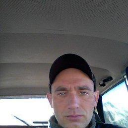 Сергей, Рени, 35 лет
