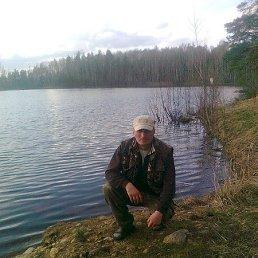 Андрей, 41 год, Бабаево