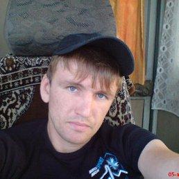 Denis, 36 лет, Красногорский