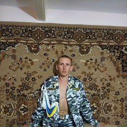 Максим, 28 лет, Гуляйполе