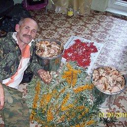 Анатолий, Красноярск, 65 лет