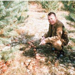 александр, 49 лет, Протвино