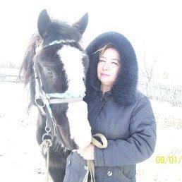 Екатерина, 41 год, Завитинск