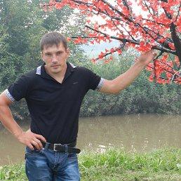 Фото Фролов Василий, Нижнекамск, 38 лет - добавлено 24 марта 2017