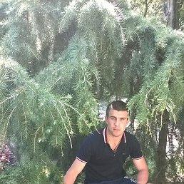 Сергей, 28 лет, Павловская