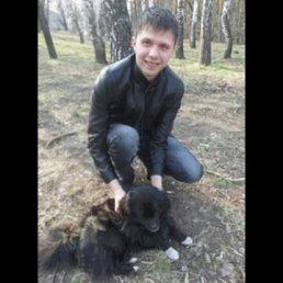 Дмитрий, 30 лет, Купянск