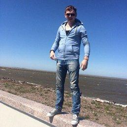 Дмитрий, 29 лет, Петергоф
