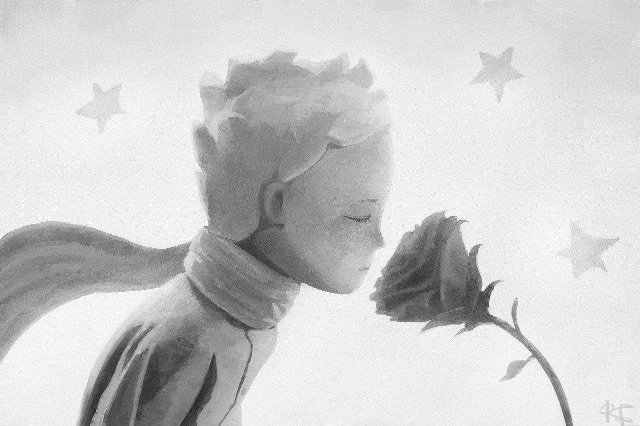 Акацуки картинки, картинки маленький принц и роза