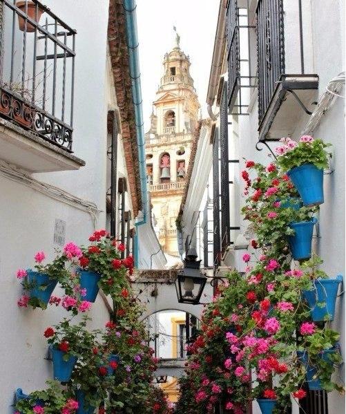 Цветущие улочки Испании - 2