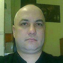 сергей, 49 лет, Новосиль