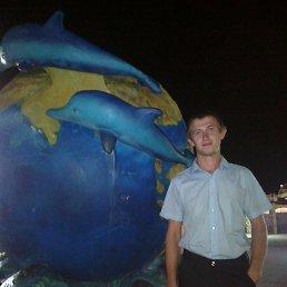 андрей, 28 лет, Новоалександровск