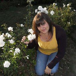 Наталія, 27 лет, Смела