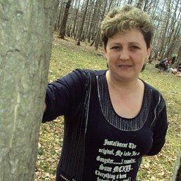 Наталья, 48 лет, Фрязино