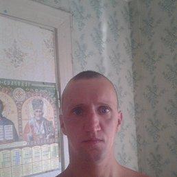 Sergii Melnychuk, 36 лет, Нововолынск