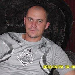 Сергей, 37 лет, Алтайское